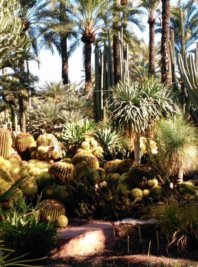 Priest garden Elche